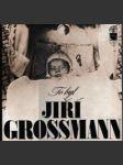 To byl Jiří Grossmann - náhled