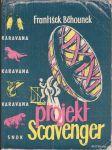 Projekt Scavenger - náhled