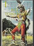 Indiáni bez tomahawků - náhled