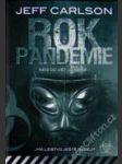 Rok pandemie - náhled