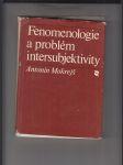 Fenomenologie a problém intersubjektivity - náhled