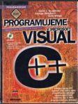 Programujeme v Microsoft Visual C++ - náhled