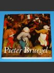 Pieter Bruegel - náhled