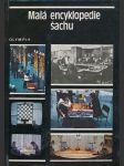 Malá encyklopedie šachu - náhled
