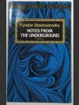 Notes from the Underground - náhled