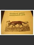 Eis Vilém - Pachové práce služebních psů - policejní pes - náhled