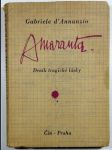 Amaranta - Deník tragické lásky - náhled