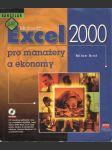 Excel 2000 pro manažery a ekonomy - náhled