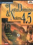 LotusDomino & Notes 4.5 - náhled