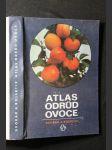 Atlas odrůd ovoce - náhled