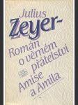 Román o věrném přátelství Amise a Amila - náhľad