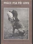 Práce psa při lovu - náhled