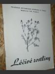 Léčivé rostliny - náhled