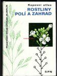 Rostliny polí a zahrad, kapesní atlas, františek hron, otakar zejbrlík - náhled