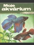 Moje akvarium - náhled