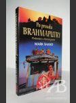 Po proudu Brahmaputry - náhled