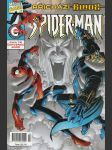 Spider-Man 12 - náhled