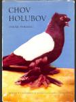 Chov holubov - náhled