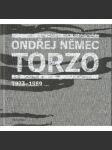 Torzo 1973-1989 - náhled