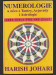 Numerologie a něco z tantry, arjuvédy i astrologie (Numerology - with Tantra, Ayurveda, and Astrlogy) - náhled