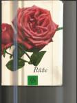 Růže - náhled