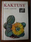 Kaktusy - náhled
