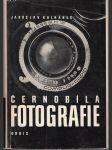 Černobílá fotografie - náhled