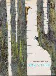Rok v lese - náhled
