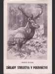 Základy strelectva v poľovníctve - náhled