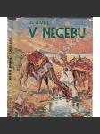 V Negebu - náhled
