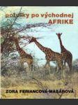 Potulky po východnej Afrike - náhled