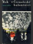 Rok v Černoleské bažantnici - náhled