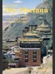 Pět Tibeťanů - náhled