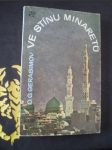 Ve stínu minaretů - náhľad
