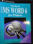 MS Word 6 pro Windows : snadno a rychle - náhled