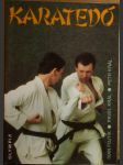 Karatedó - náhled
