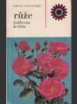 Růže královna květin - náhled
