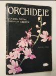 Orchideje - náhled
