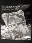 Alte Judenfriedhöfe Böhmens und Mährens - náhled