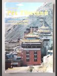 Pět Tibeťanů - Staré tajemství himalájských údolí působí zázraky - náhled