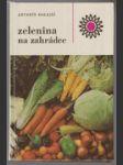 Zelenina na zahrádce - náhled