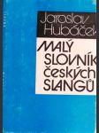 Malý slovník českých slangů - náhled