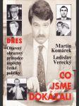 Co jsme dokázali - objevný obrazový průvodce úspěchy české politiky - náhled