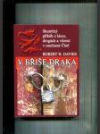 V břiše draka (Skutečný příběh o lásce, drogách a vězení v současné Číně) - náhled
