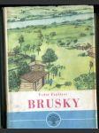 Brusky. Román (4 sv.) - náhled