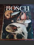 Hieronymus Bosch - náhled