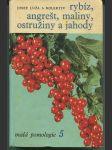 Malá pomologie. 5, Rybíz, angrešt, maliny, ostružiny a jahody - náhled