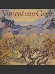 Vincent van Gogh - náhled