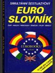 Euro-slovník - náhled