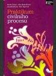 Praktikum civilního procesu - náhled